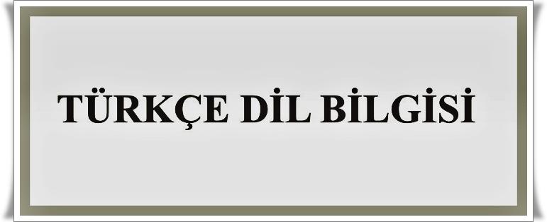 Türkçe Dil Bilgisi Üstüne Çalışmalar