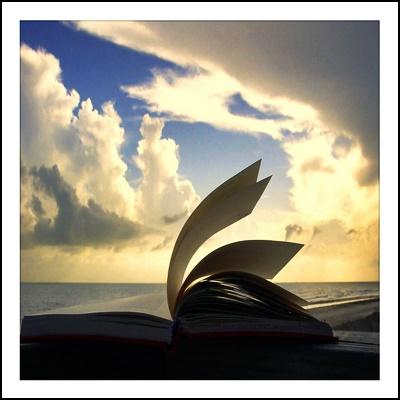edebiyat-siir
