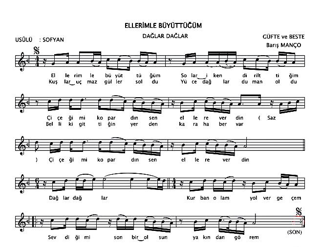 Flüt İle Çalınabilecek En Güzel Şarkılar